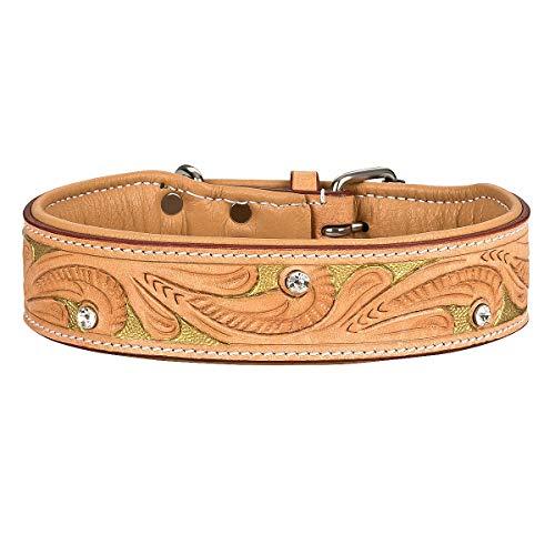 MICHUR GoldenEye Hundehalsband Leder, Lederhalsband Hund, Halsband, Leder, BEIGE, Caramel, Braun,...