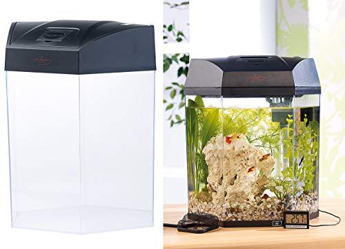 infactory Nano Aquarium: Beleuchtetes Panorama-Aquarium Hexagon, Komplett-Set, 19 l (Aquarien...