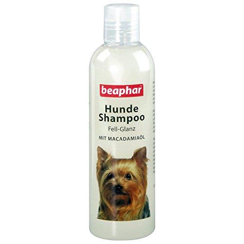 beaphar Hunde Shampoo Fell-Glanz | Hundeshampoo für glänzendes Fell | Mit Macadamiaöl |...
