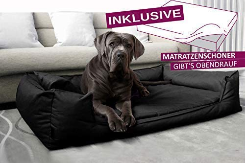 tierlando® Orthopädisches Hundebett Goofy VISCO | ~ inkl. Matratzenschoner ~ | fest gewebtes...