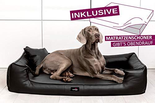 tierlando® G3-L-03 Orthopädisches Hundebett Goofy VISCO | ~ inkl. Matratzenschoner ~ | Anti-Haar...