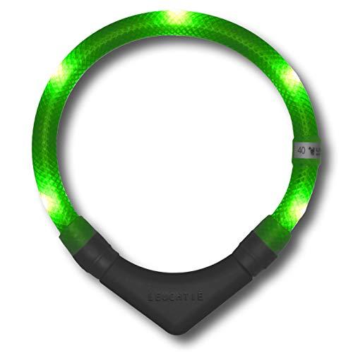 LEUCHTIE® Leuchthalsband Plus neongrün Größe 50 I LED Halsband für Hunde I 100 h Leuchtdauer I...