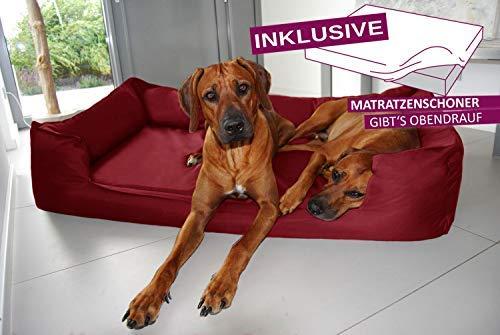 tierlando® Orthopädisches Hundebett Goofy VISCO   ~ inkl. Matratzenschoner ~   fest gewebtes...