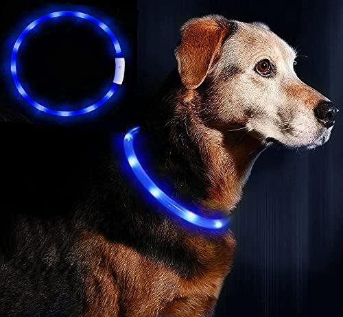 LED Leuchthalsband Hunde Halsband - Anicoll USB wiederaufladbar - Längenverstellbarer Haustier...