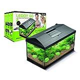 Aquael 5905546191692 Leddy 60Ausgestattetes Aquarium, 60X 30X 30cm, 54L