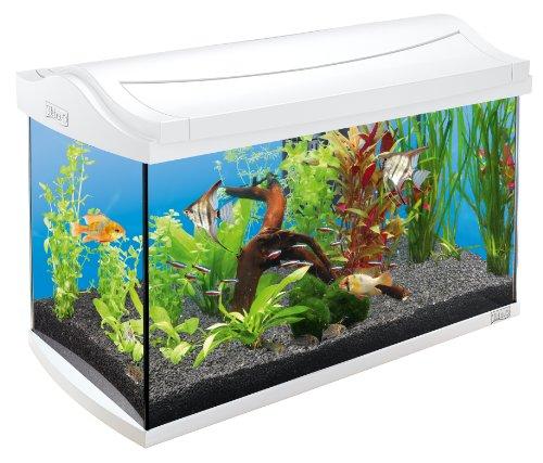 Tetra AquaArt Discovery Line Aquarium-Komplett-Set 60L Weiß