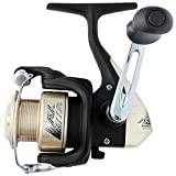 SHIMANO Ax Spin Reel 1 + Kugellager Box