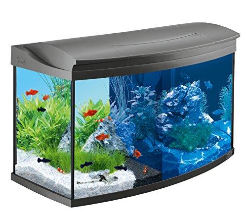 Tetra AquaArt Evolution Line LED Aquarium-Komplett-Set 100 L (inklusive LED-Beleuchtung, Tag- und...