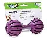PetSafe Busy Buddy Hundespielzeug Waggle M/L, befüllbarer Snackball, Zahnpflege für Hunde,...