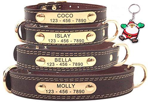 SLZZ Premium Personalisiert Hundehalsband aus Leder, mit graviertem Namensschild, personalisierbar,...