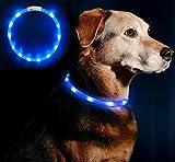 Anicoll LED Leuchthalsband Hunde Halsband - blau USB Wiederaufladbar - Längenverstellbarer Haustier...