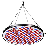 Niello Reflector 50W LED Pflanzenlampe LED Grow Light Vollspektrum Pflanzenlicht Led Grow Lamp nur 1...