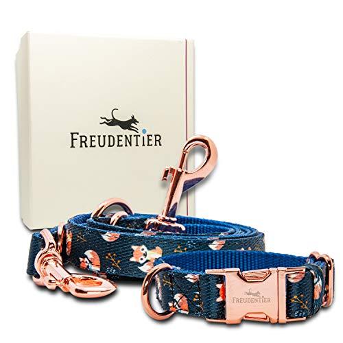 FREUDENTIER® Hundehalsband & Hundeleine im wundervollen Set   Inkl. Geschenkbox   Let's get Foxy...