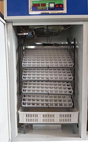 Brutmaschine, vollautomatisch, Motorbrüter, Kippwendung, 352 Hühnereier
