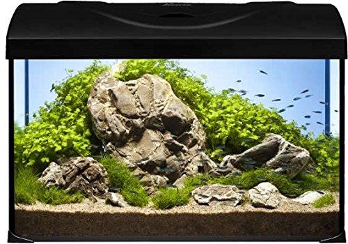 Diversa Aquarium Startup Set LED, rechteck schwarz, Aquarien komplett Set mit Glasbecken und...