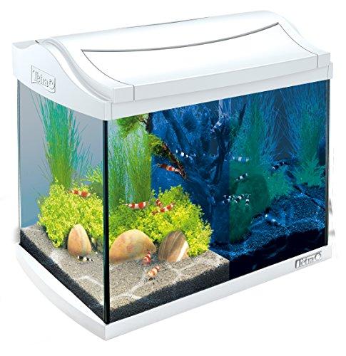 Tetra AquaArt Discovery Line LED Aquarium-Komplett-Set 20 Liter weiß (inklusive LED-Beleuchtung,...