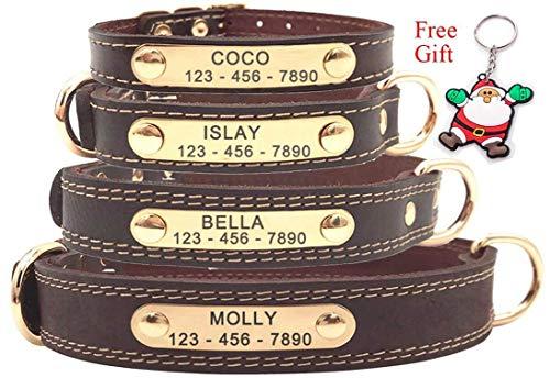 Premium-Hundehalsband aus Leder, mit graviertem Namensschild, personalisierbar, weiche Haptik,...