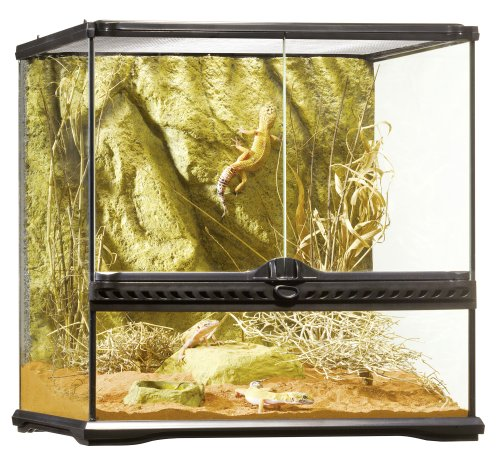 Exo Terra natürliches Terrarium Klein, 45x45x45cm