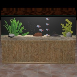 Aquarium Reinigung