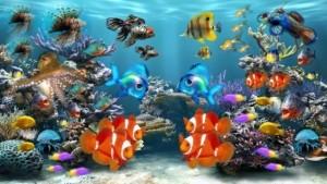 Aquarium verschiedene Fische