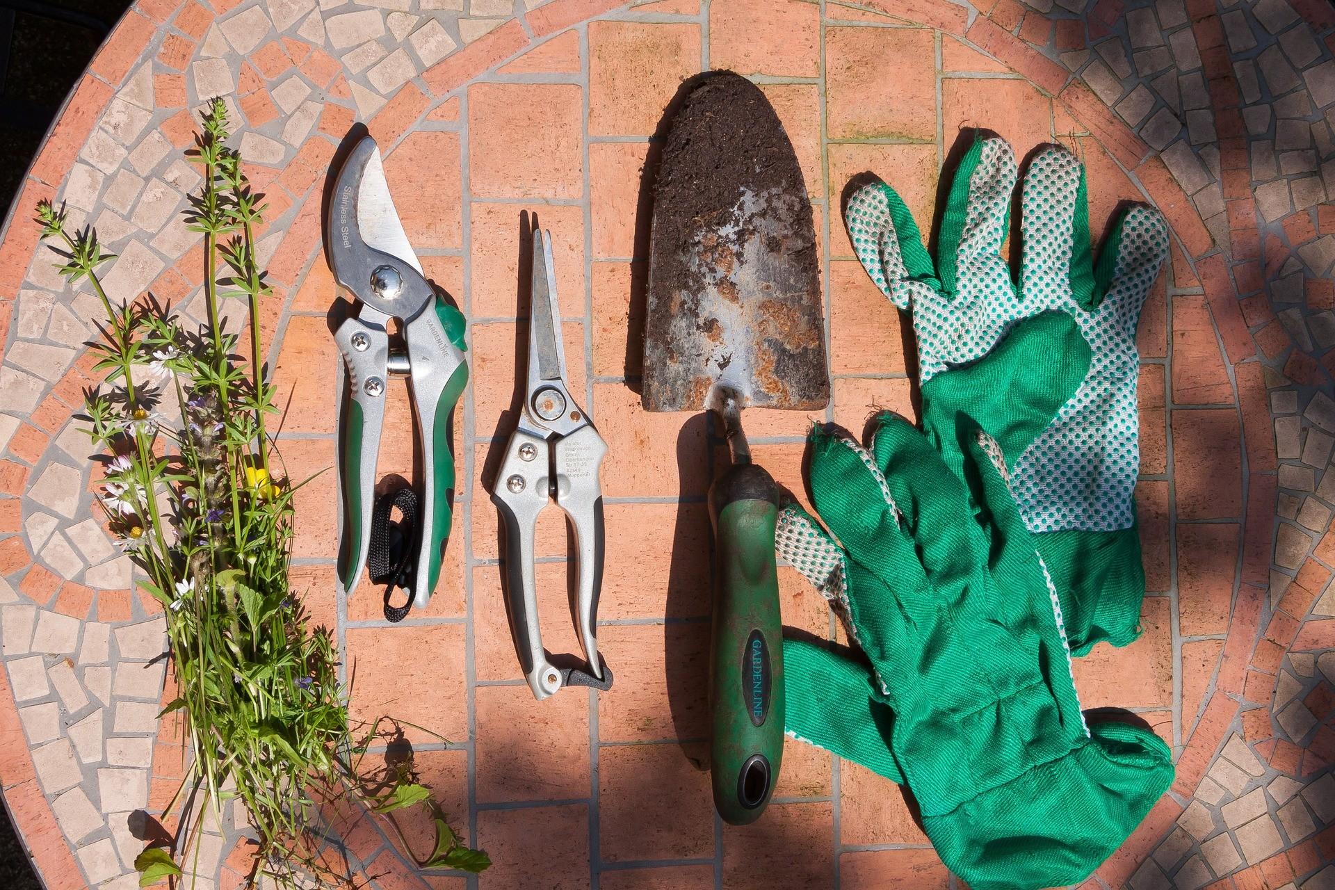 Gartenschere: Gartengerät