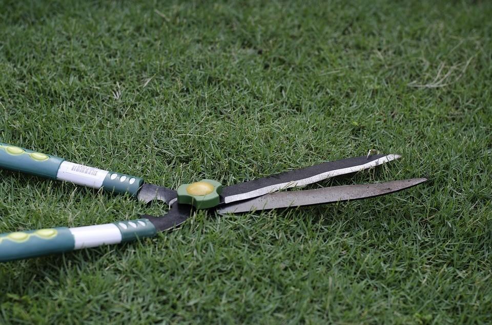 Gartenschere: auch die Heckenschere gehört dazu