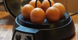 Eierkocher Test