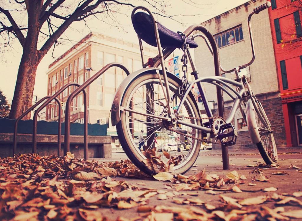 Fahrradschloss mit Kette