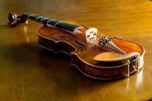 Geige Material Holz