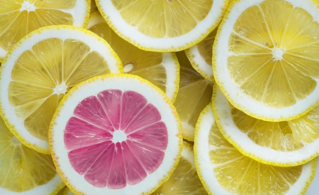 Zitrusfrüchte Scheiben