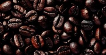 Espressobohnen Test