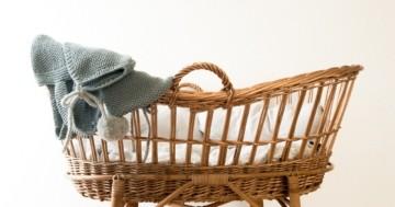 Babykorb Test