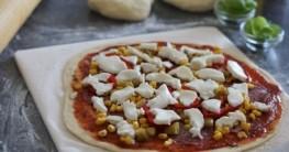 Pizzastein Test