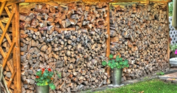 Holzunterstand Test