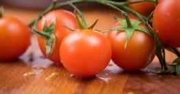 Tomatenpresse Test