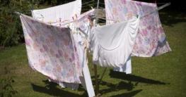 Wäschespinne Test