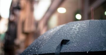Regenschirmständer Test